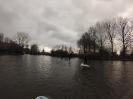 Brugge Reitjes_3